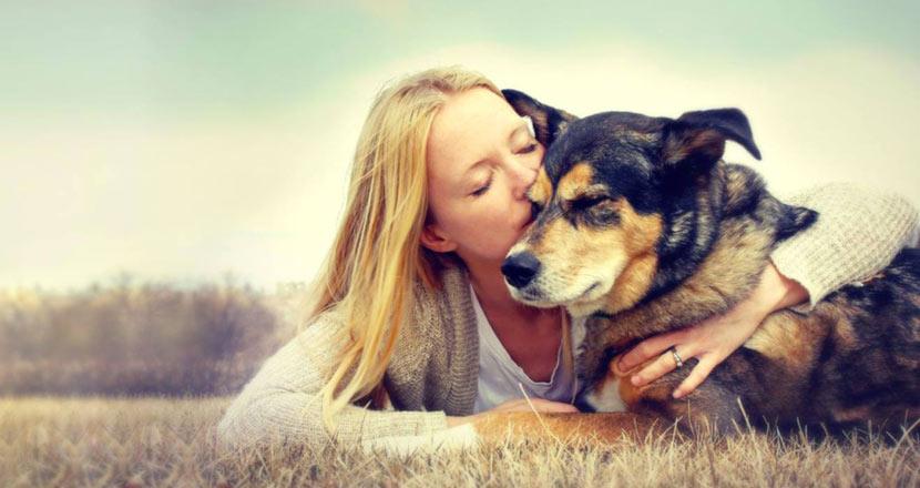 Nasce Ponte Arcobaleno, Servizio Di Onoranze Funebri Per Animali Domestici.